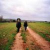 Daniel de Cullá - On the Road with Corns
