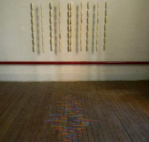 Nelda Ramos :: Pororo - por oro - oro, 1, fotográfias de objetos e instalación, Argentina