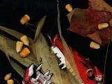 2011-04-27-CORN-TheHarvestMonster1-960x618
