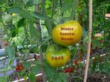 birger-jesch-960x720