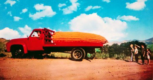connie jean corn