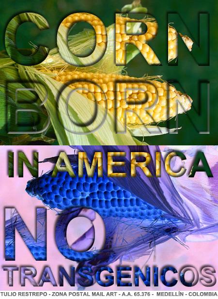 corn_born_in_america_tulio_restrepo