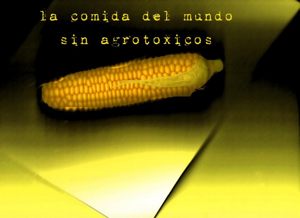 la-comida-del-mundo-960x698