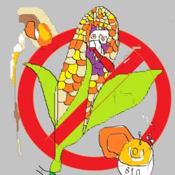 maiz transgenico stop 810
