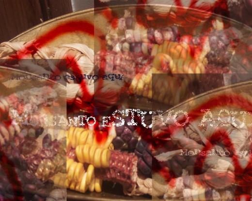 Mado Reznik :: Estuvo aquí, Foto Collage de una foto de diferentes tipos de maíz con aerosol y texto , Buenos Aires, Argentina