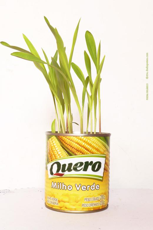 poema_organico