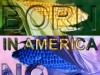corn_born_in_america_tulio_restrepo